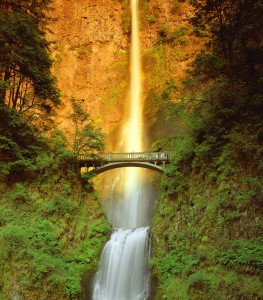 Multnomah Falls Shuttle