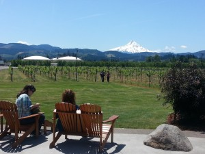 Mt Hood Vineyards